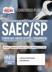 Apostila SAEC-SP 2020 – Comum aos Cargos de Nível Fundamental